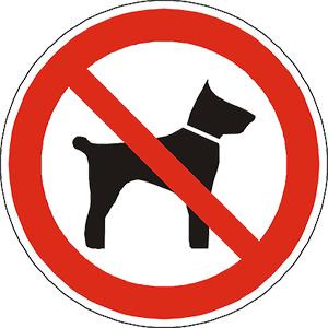 Hunde_leider_nicht_erlaubt_celticman_triathlon