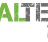 VITAL-TEAM_beim_Celticman_Triathlon